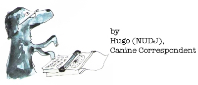 hugotypewriter1by